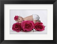 Vallace Micalla III Rose Framed Print