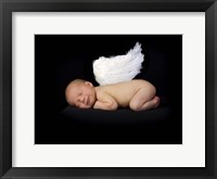Framed Baby In Feathered Wings