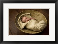 Allen Baby In Basket Framed Print