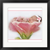 Baby In Pink Bloom Framed Print