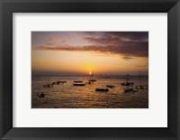 Framed Outrigger Sunset