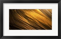 Framed Golden Sands