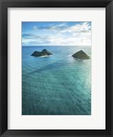 Framed Moku Nui's Shadow