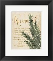 Herb Study IV Framed Print