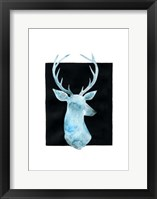 White Tail Bust I Framed Print