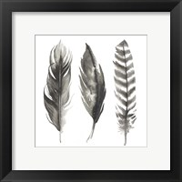 Framed Watercolor Feathers I