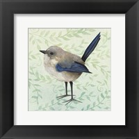 Framed Little Bird III