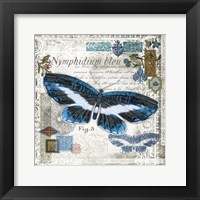 Butterfly Artifact III Framed Print