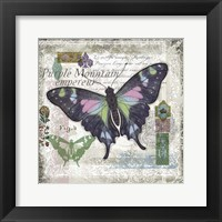 Butterfly Artifact IV Framed Print