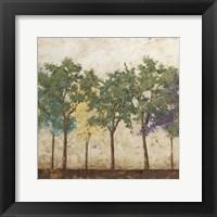 Arbor Discourse I Framed Print