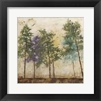 Arbor Discourse II Framed Print