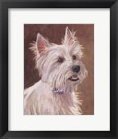Framed Mac West Highland Terrier