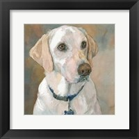Framed Kaley Yellow Lab