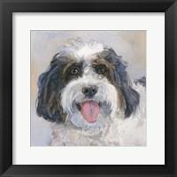 Framed Archie Daisy Dog