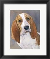Framed Waylon Bassett Hound