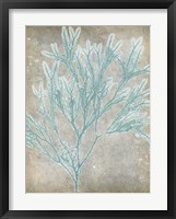Spa Seaweed I Framed Print