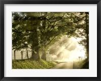Fresh Morning I Framed Print