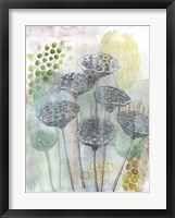 Seed Pod Composition I Framed Print