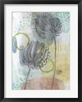Seed Pod Composition IV Framed Print