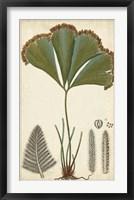 Foliage Botanique I Framed Print