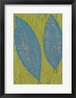 Tropicale II Framed Print
