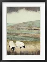 Open Meadow II Framed Print
