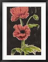 Haloed Poppies I Framed Print