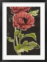 Haloed Poppies II Framed Print