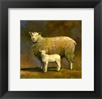 Framed Taffy's Lamb