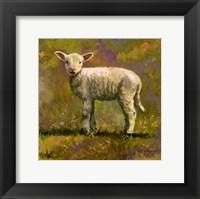Framed Leap Year Lamb