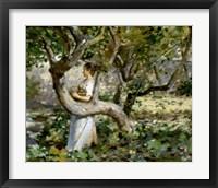 Framed In The Garden, c. 1891