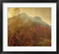 Framed Autumn Colors 2