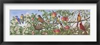 Framed Grandfather's Four Seasons