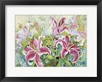 Framed Stargazer Lilies