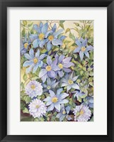 Framed Blue Clematis