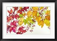 Framed Fall Color