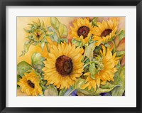 Framed Cutting of Sunflowers
