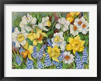 Framed Daffodils And Grape Hyacinths