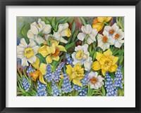 Framed Daffodils And Grape Hyacinths