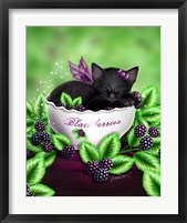 Blackberry Kitten Framed Print