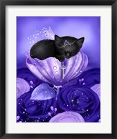 Royal Daydreams Framed Print