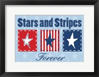 Framed Stars and Stripes