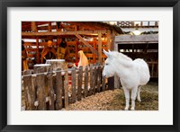 Framed Live Nativity Display