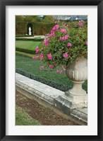 Framed Formal Gardens of Versailles, France