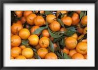 Framed Oranges, Nasch Market, Austria