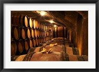 Framed Wooden Barrels with Aging Wine in Cellar