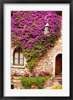 Framed Flowering Vines, Historic Eze