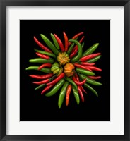 Framed Hot Peppers 1