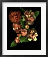 Framed Camellia 3