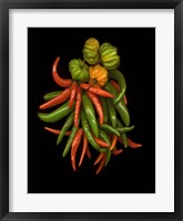 Framed Hot Peppers 3